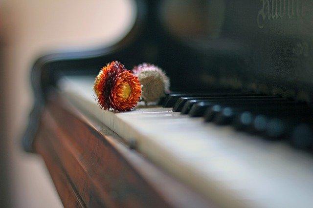 ピアノ好きなら知っておきたい!ピアノの種類とその特徴